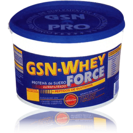 GSN WHEY FORCE 900GR                        G.S.N.