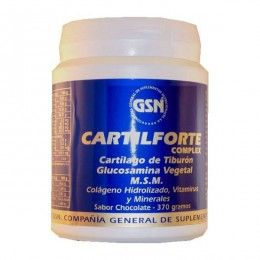 CARTILFORTE CHOCOLATE 34OGR G.S.N.
